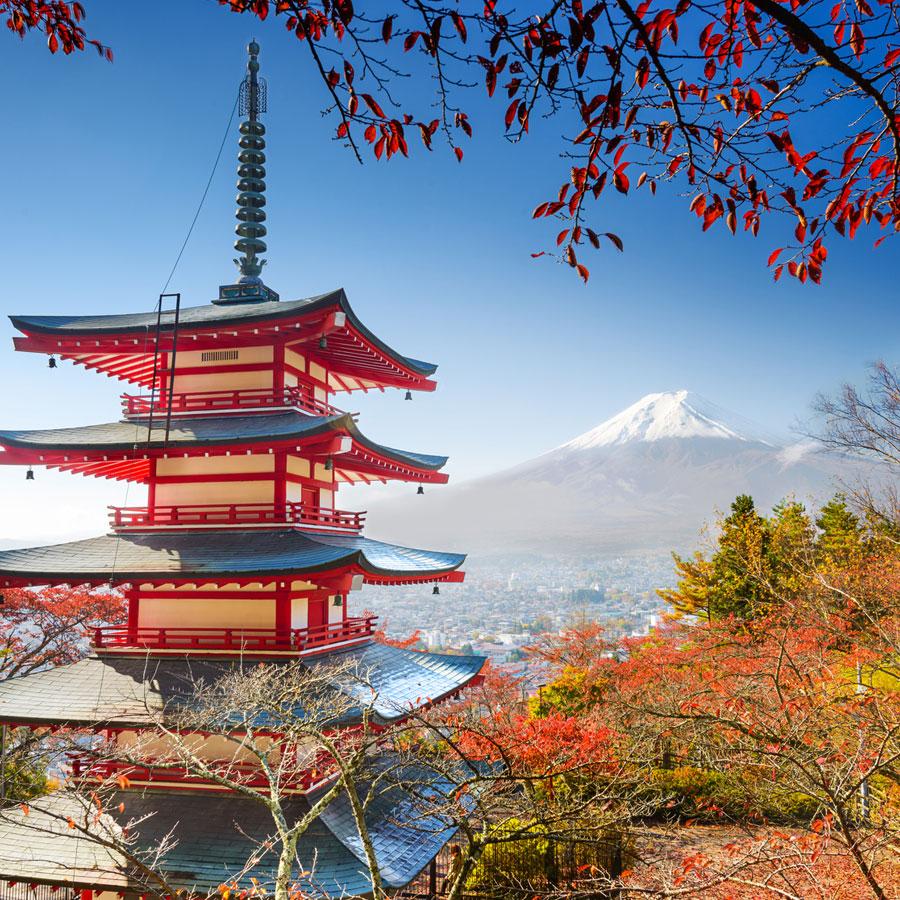Exporter des vins et spiritueux au Japon